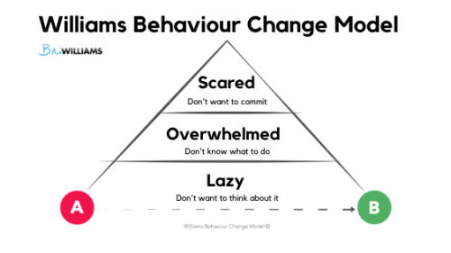 Williams Behaviour Change Model